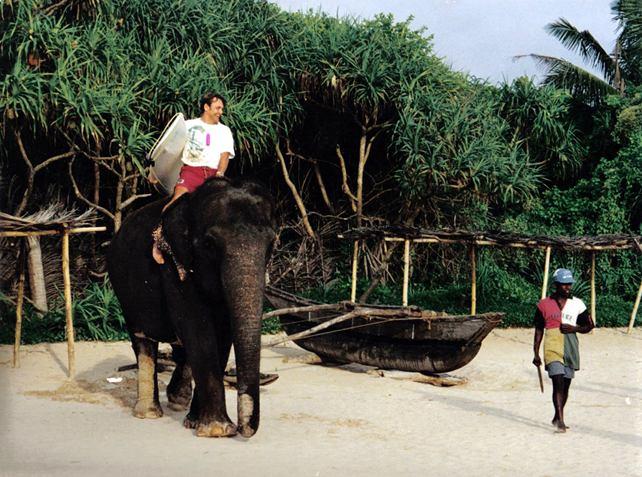 Surfer auf Elephant